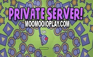 moomoo.io private server