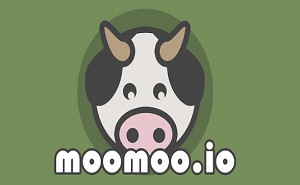 moomoo.io app